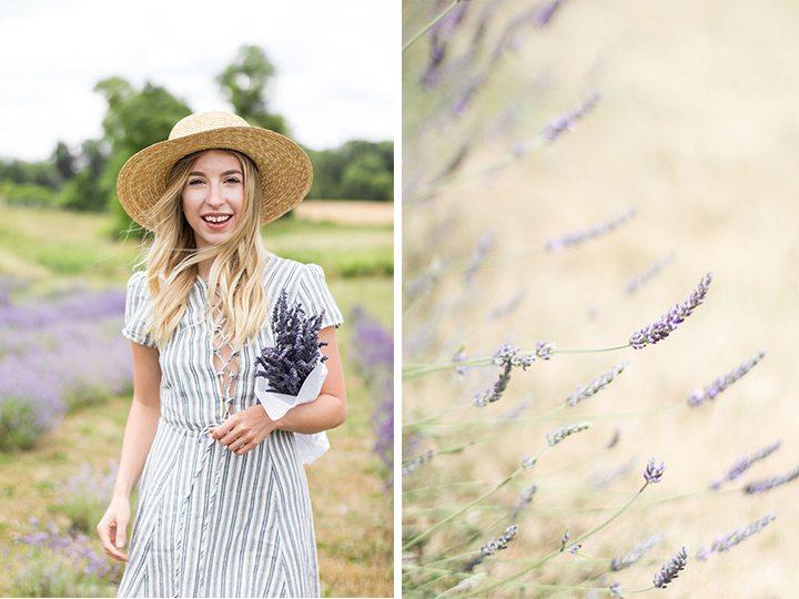 weirs-lane-lavender-7