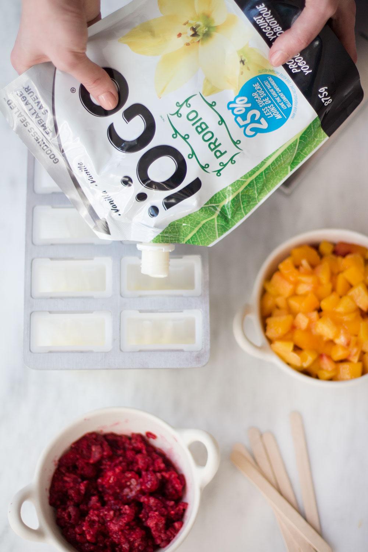 yogurt_popsicles_3