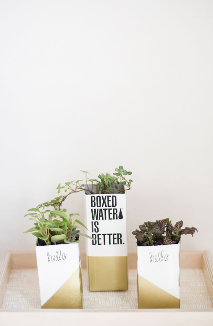 boxed-water-is-better-1