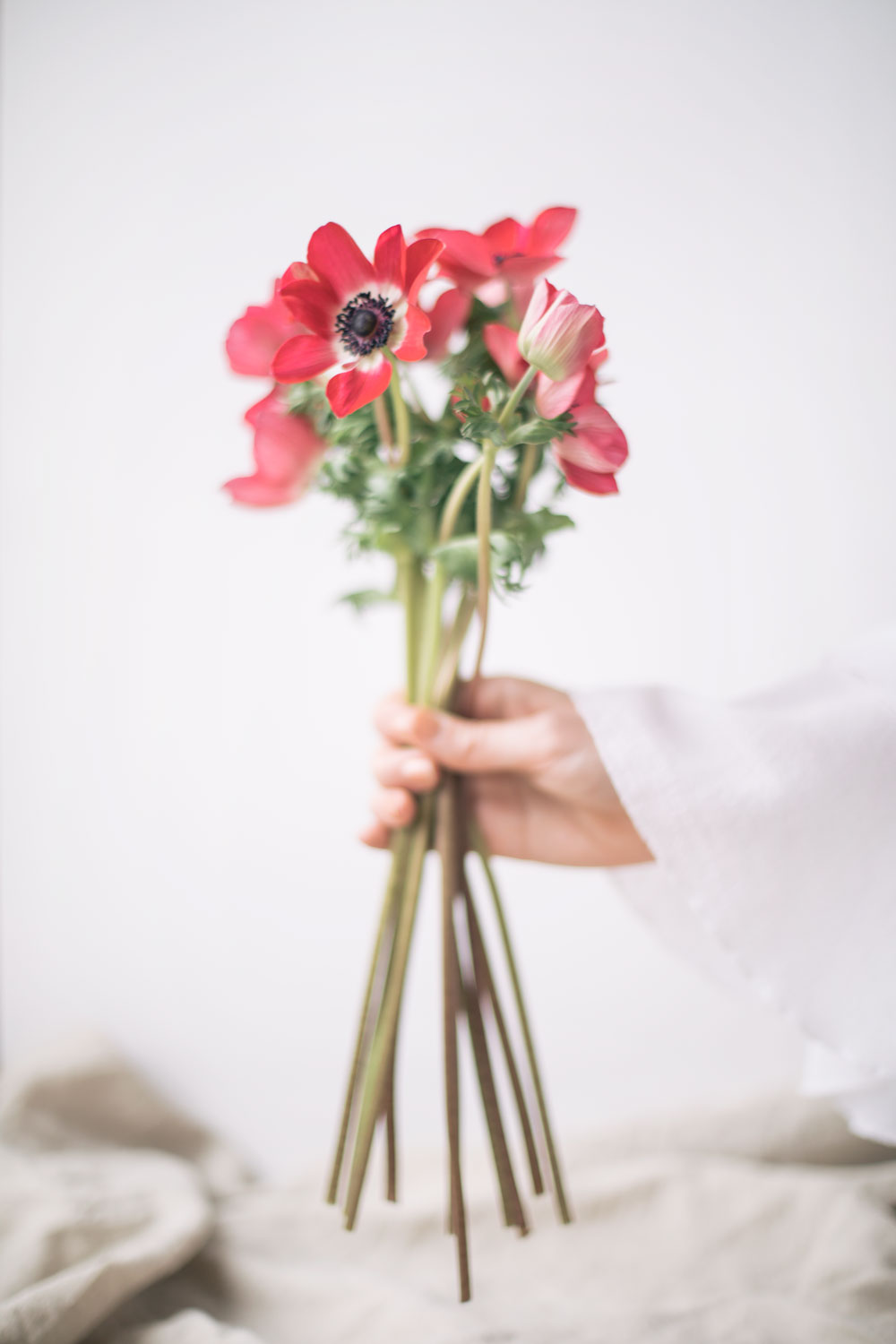 5 Flowers To Give For Valentines Day That Arent Roses The